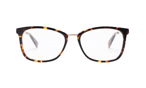 Lentes ópticos: Gianni Po 2636 Carey Líneas delgadas   Ligero   Combinación de Metal y Acetato