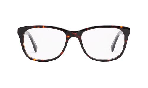 Lentes ópticos: Gianni Po 6110 Carey Marco y varillas gruesas | Varilla Flex | Detalle metálico decorativo en la varilla